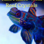 Reef Crystals 200 Gallon Mix