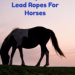 Lead Ropes For Horses