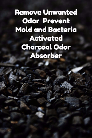 Activated Charcoal Odor Absorber